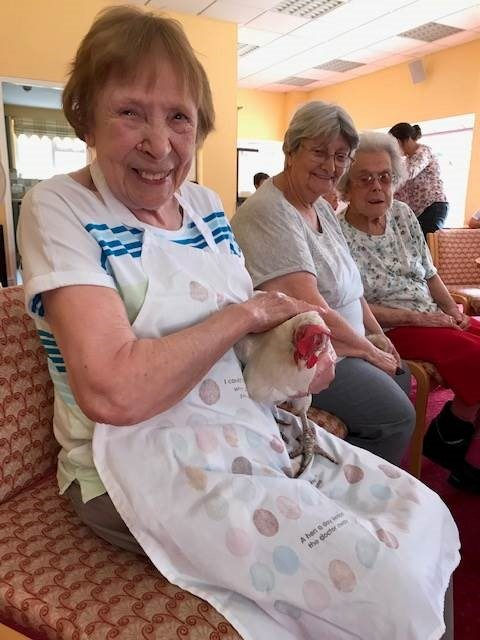 Innovative project combining hens, creativity and heritage arrives in Darlington for the first time