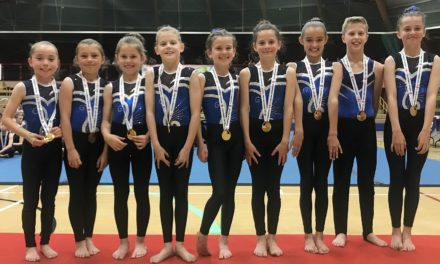 Local gymnasts achieve National TeamGym title
