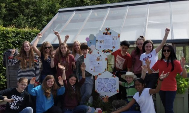 Ripon Grammar students do their bit to help save the bees
