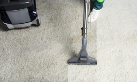 Reasons Why A Professional Carpet Cleaner Is Your Best Chance At A Healthy Interior