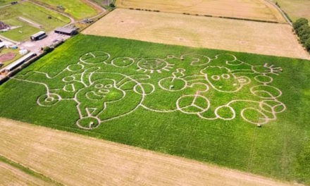A SHAUN THE SHEEP MOVIE – DRONE CAPTURES GIANT CROP CIRCLE