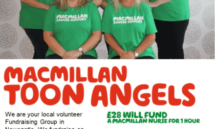 Macmillan Toon Angels Summer Fair