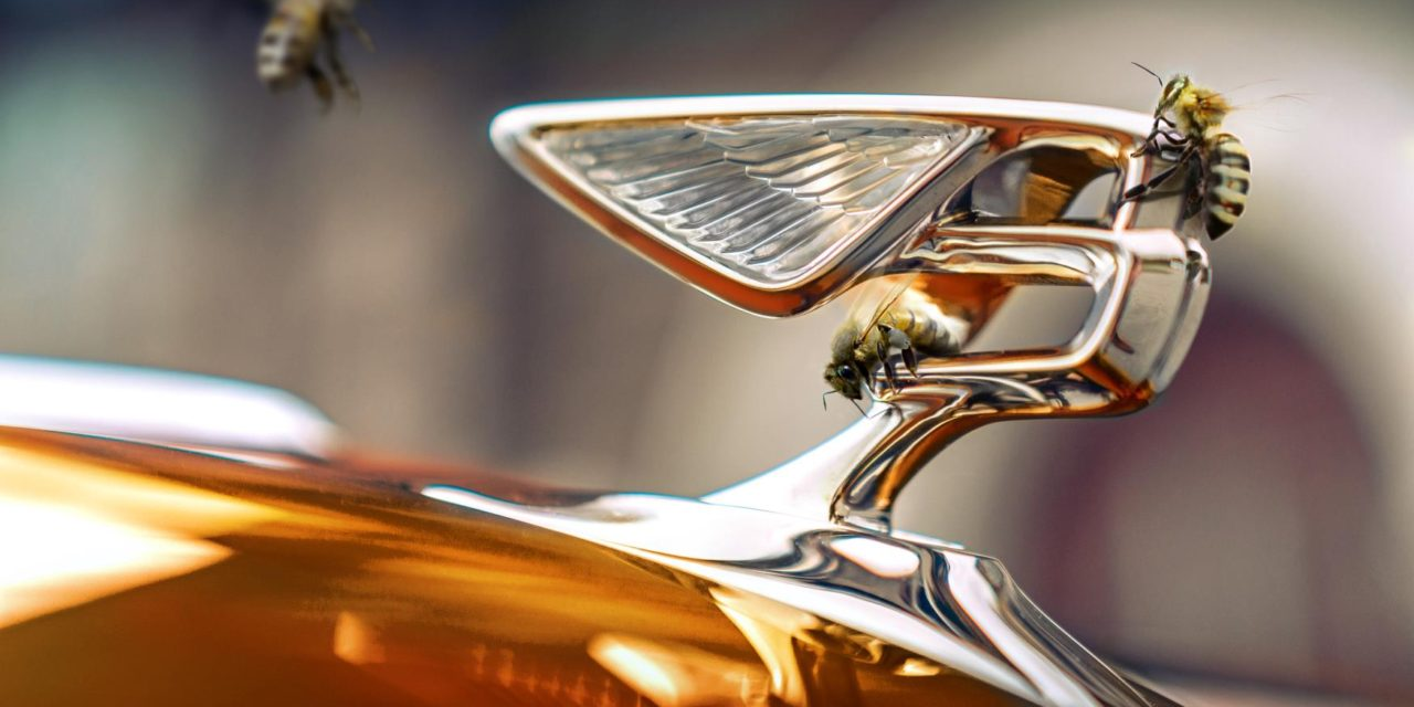 INTRODUCING BENTLEY'S NEW FLYING BEES