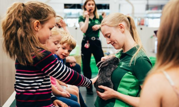 PETS AT HOME TO HOST FREE PET WORKSHOPS DURING THE SUMMER HOLIDAYS