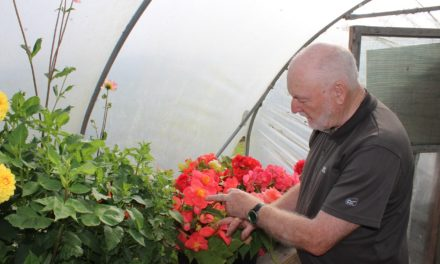 Gardening course reaps rewards for autism charity