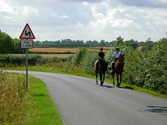 HOLD YOUR HORSES! HOW TO PASS HORSES SAFELY ON THE ROAD