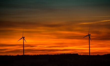 Newcastle recruiter offers support for Tees Renewable Energy Plant staff in light of layoff claims