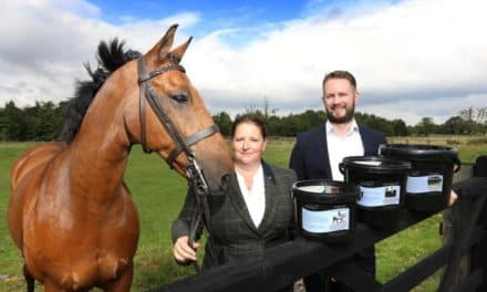 Equibalancer Galloping Towards Growth After Winning North East Fund Backing