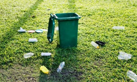 Skip Bins Adelaide Help in Apt Home and Office Waste Management