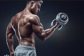 Get desirable shape effortlessly with impactful SARMs