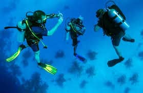 Reliable, high performance and affordable scuba diving equipment