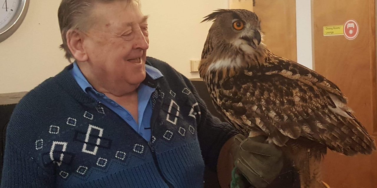 Birds of prey pay flying visit to Teesside care home