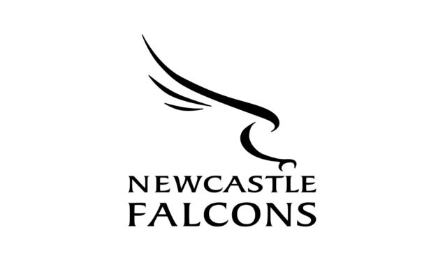 Josh Matavesi keen to fly straight in for Newcastle Falcons
