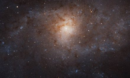Stars Pollute, but Galaxies Recycle