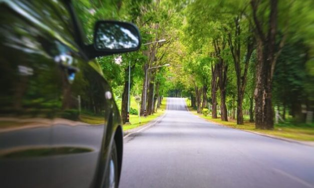Eco driving tips and techniques