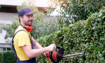 What To Look For In A Landscaper To Hire