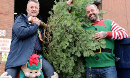 Dispose of your unwanted Christmas trees with eco-friendly Scott Bros