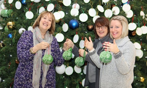 Seed of an idea grows into annual act of remembrance for hospice supporters