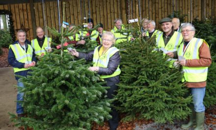 Tagged trees offer advice on how to recycle – and support local hospice