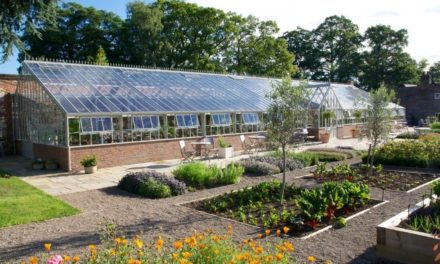 How Are The Whole Greenhouse Is Beneficial For You? Check Out The Details Here!