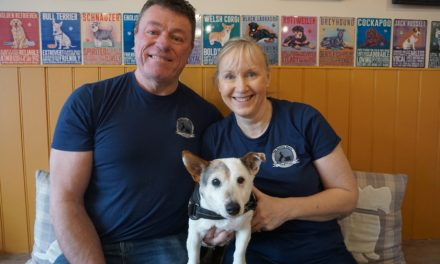 Dog cafe to become centre for coast's canine communit