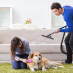 Buying The Best Vacuum For Pet Hair