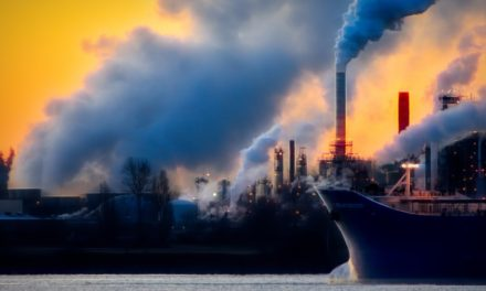 Making the Move Towards Carbon Neutrality
