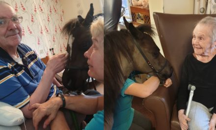 Miniature pony takes resident on a ride down memory lane