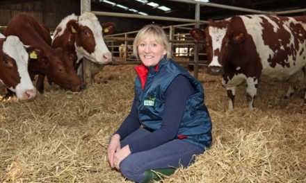 Growing interest in produce with provenance leads consumers to organic dairy