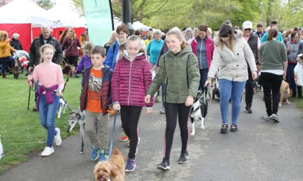 Bark in the Park postponed due to social distancing rule