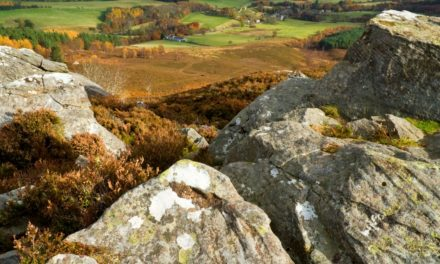 Northumberland National Park Launches Covid-19 Community Support Initiative