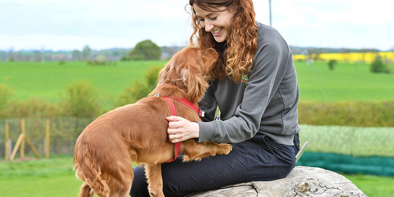 Community for you and man's best friend during coronavirus lockdown