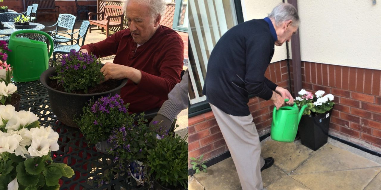 Plants donated to care home for National Gardening Week
