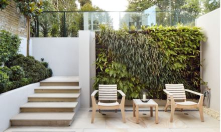 Small Garden Ideas to Make the Most out of a Tiny Outdoor Space