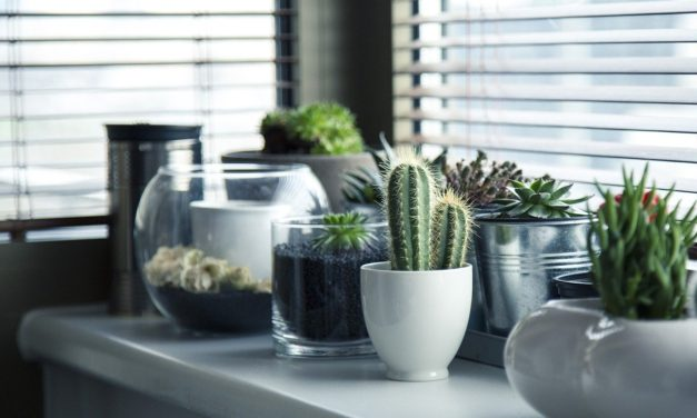 How to Make Your Home Feel More Personal
