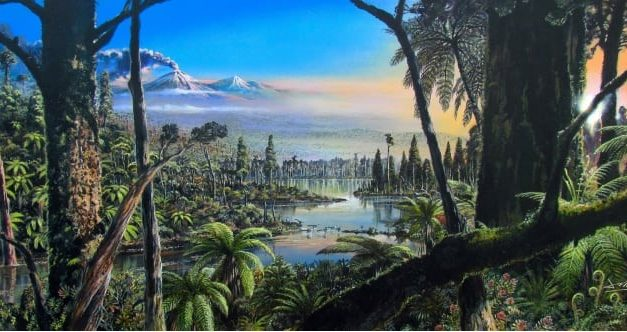 New discovery: Evidence for a 90-million-year-old rainforest near the South Pole