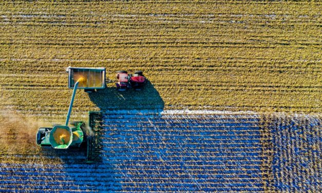 The History of Farming