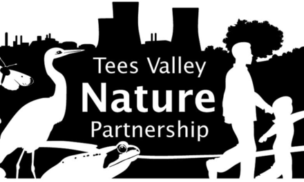 New TVNP Community Grant supports local communities to connect to nature