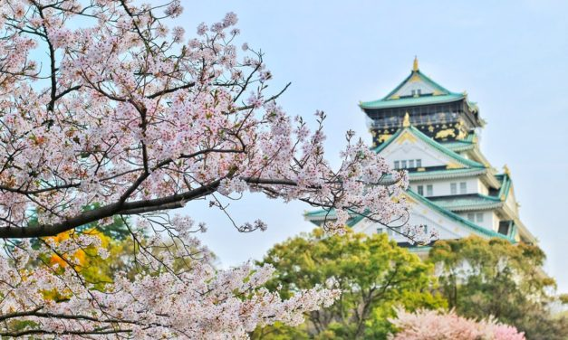 Tokyo Travel: 5 Top Tips When Planning a Trip to Japan