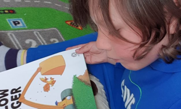 Four-year-old Theo is the good books after raising money for charity