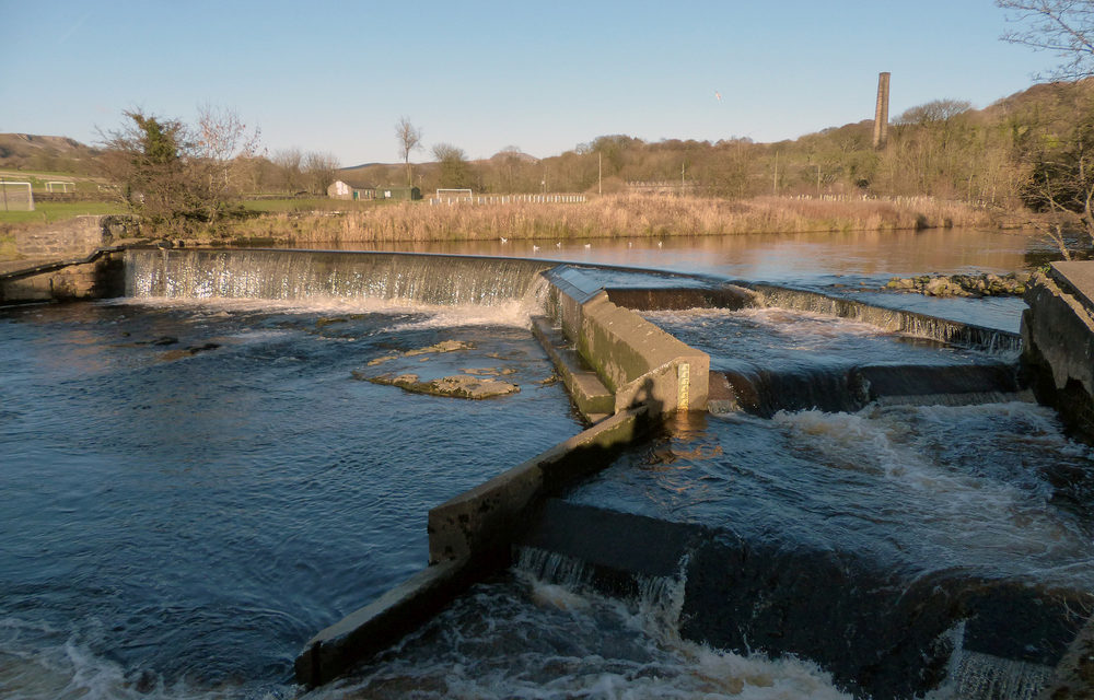 Weir raising funds to help fish
