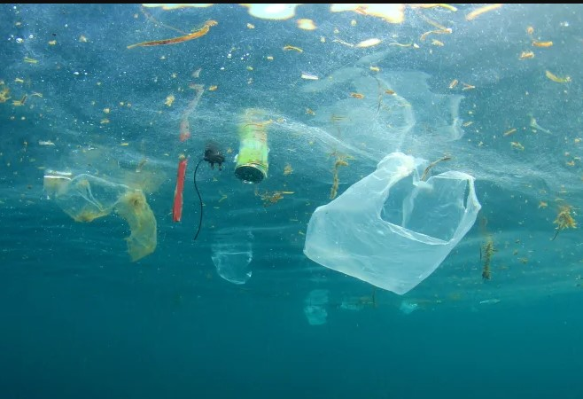Thousands of tonnes of ocean pollution can be saved by changing washing habits