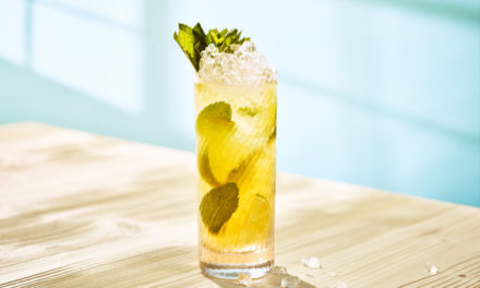 Celebrate National Mojito Day with a MOOSE Mountain Mojito