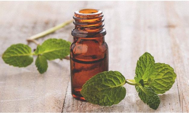 How peppermint oil capsules help you breath smelling fresh again?