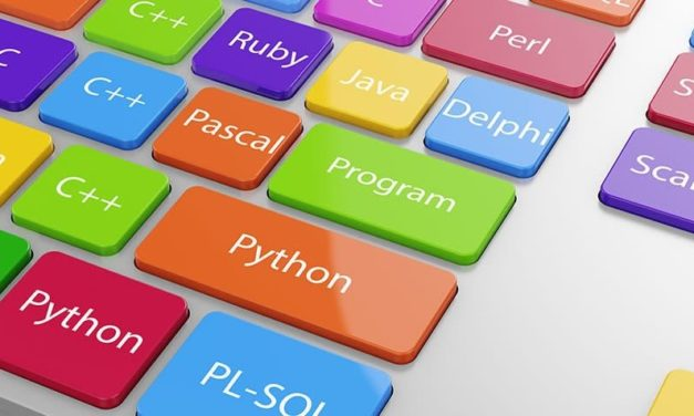 Web Programming Languages: The Most Used On The Internet