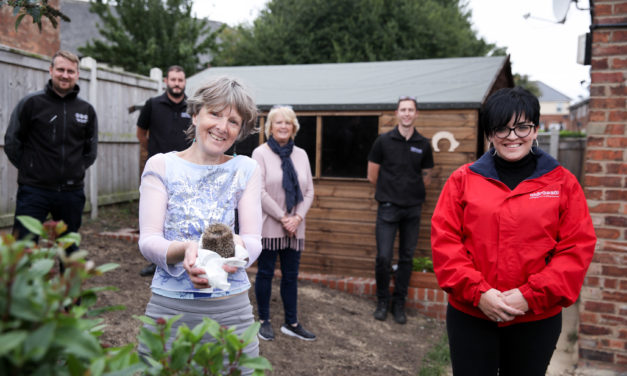 "Thirteen helps hedgehogs with new ""hogspital"" extension"