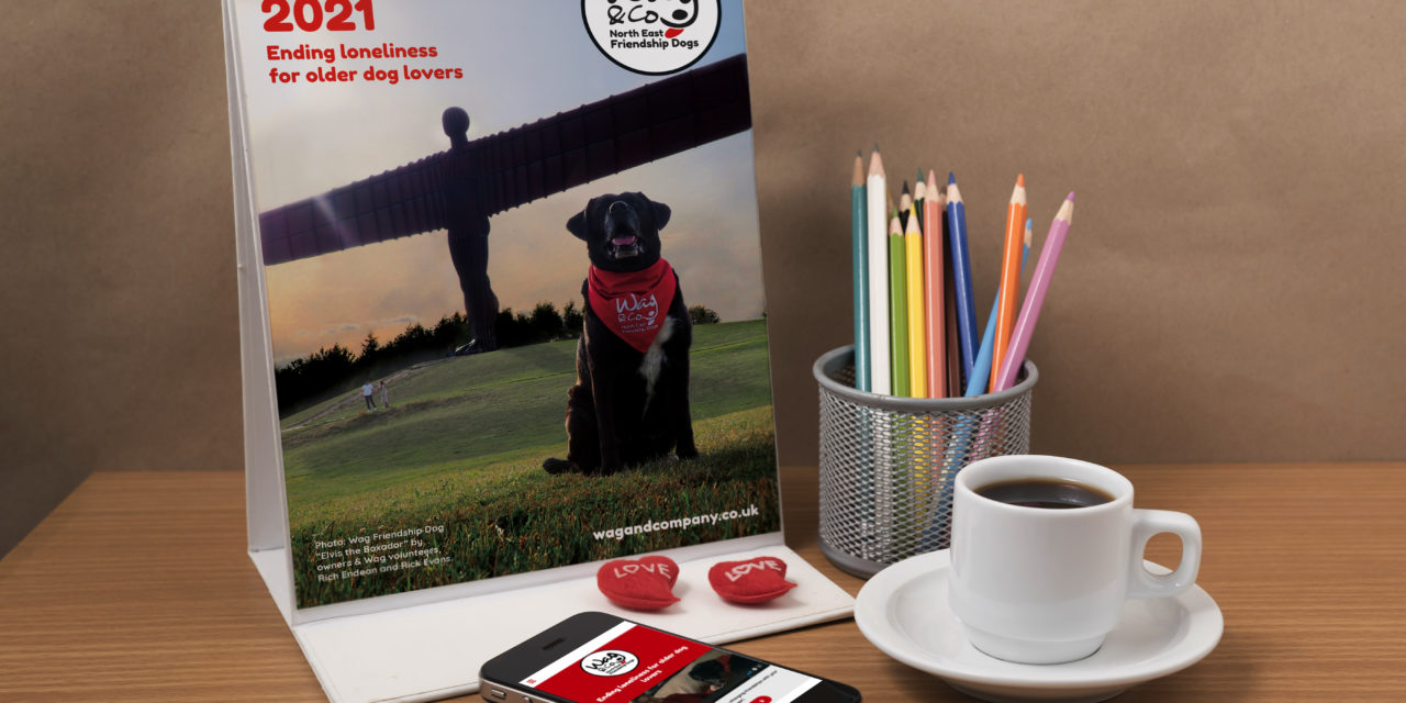 Dog owning volunteers stand in friendship to support regional charity