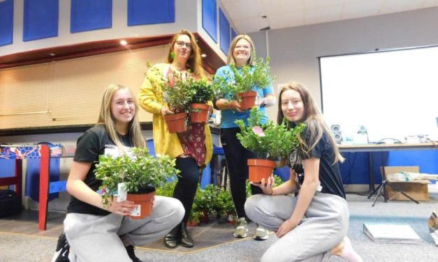 Planting for Hartlepool: the Green-fingered teens who spent their summer spreading a little bit of local cheer