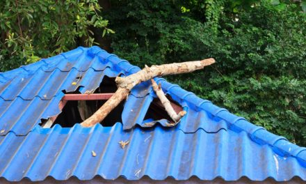3 Unmistakable Signs You Need a New Roof (Before It's Too Late!)