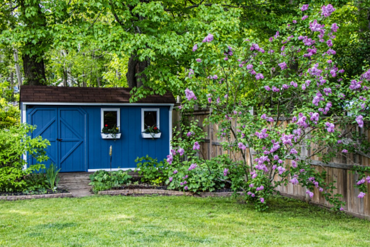 Backyard Shed Ideas That Might Interest You North East Connected